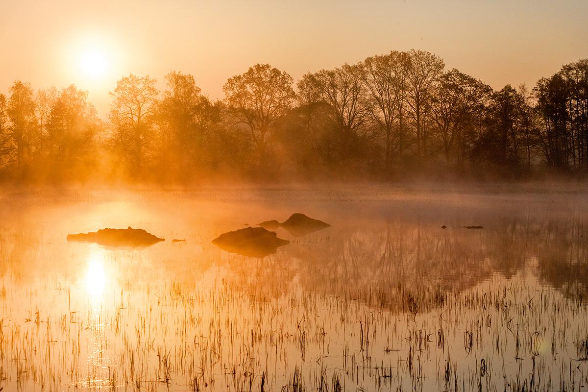 Każdej jesieni podczas odłowów spuszcza się wodę ze wszystkich stawów, a przed nadejściem zimy napełnia je ponownie